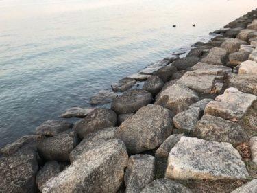 水遊び:ブラックバス✖琵琶湖 2月・3月のにおの浜について タックル編(ロッド・リール・ライン)