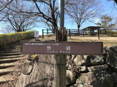 水遊び:ブラックバス✖群馬県 3月の竹沼貯水池