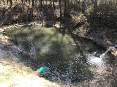4月のサンペイ(三瓶)フィッシング釣行でのおすすめルアーと使い方!(福島県の管理釣り場)