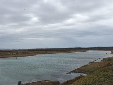 10月の猿払川のイトウ釣行記①(北海道のネイティブトラウト)
