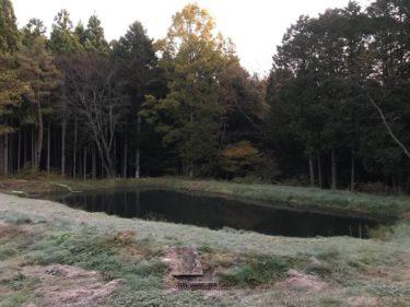 11月のサンペイフィッシング釣行からのおすすめルアーと攻略法!(福島県の管理釣り場)